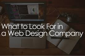 What to Look for in a Good Web Design Company