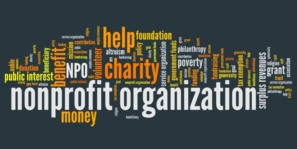 Applying Business Expertise to Non-Profit Organizations